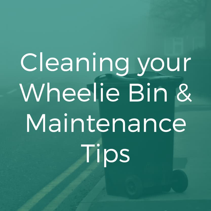 Cleaning your Wheelie Bin & Maintenance Tips